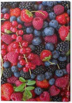 Obraz na Płótnie Bluberry, maliny, jeżyny i czerwone currrunt