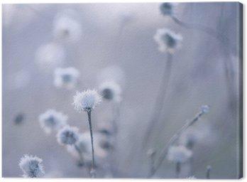 Obraz na Płótnie Blue stonowanych tle kwiaty
