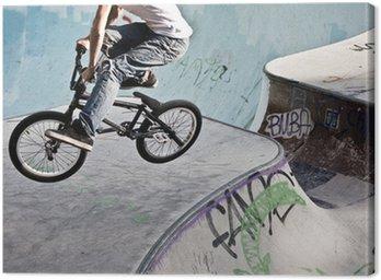 Obraz na Płótnie BMX w skateparku