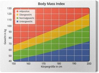 Obraz na Płótnie Body Mass Index