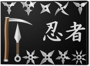 Obraz na Płótnie Bronie ninja