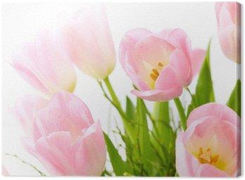 Obraz na Płótnie Bukiet różowych tulipanów