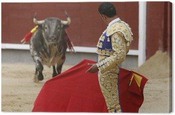 Obraz na Płótnie Bulls