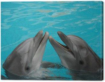 Obraz na Płótnie Butelka nosed delfinów