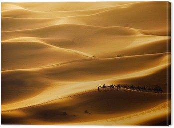 Obraz na Płótnie Camel caravan