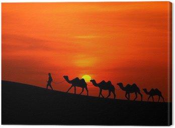 Obraz na Płótnie Camel Sillhouette karawana z zachodem słońca