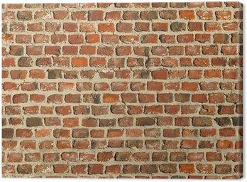 Obraz na Płótnie Ceglany mur