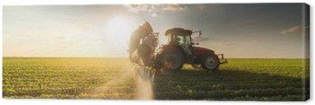 Obraz na Płótnie Ciągnik rozpyla pole soi na wiosnę