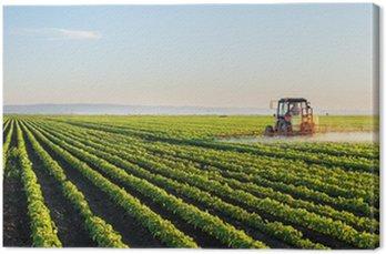 Obraz na Płótnie Ciągnik rozpylanie pola soi