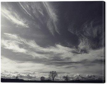 Obraz na Płótnie Czarno-białe zdjęcie krajobrazu jesienią