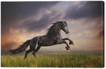 Obraz na Płótnie Czarny koń galop fryzyjski