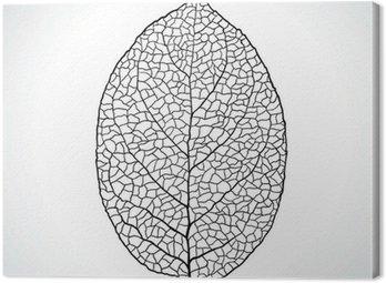 Obraz na Płótnie Czarny liść makro naturalny izolowane. Ilustracji wektorowych.
