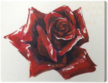 Obraz na Płótnie Czerwona róża akwarela malowane
