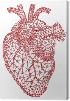 Obraz na Płótnie Czerwone serce człowieka z geometryczny wzór siatki, wektor