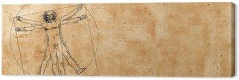 Obraz na Płótnie Człowiek witruwiański Leonarda da Vinci