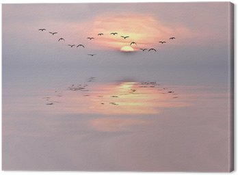 Obraz na Płótnie Dawn of delikatnych kolorach