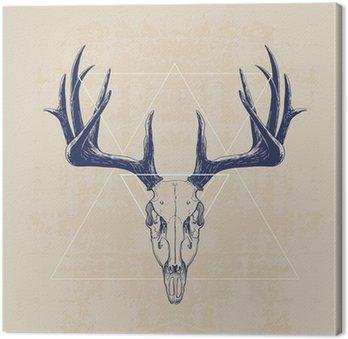 Obraz na Płótnie deer skull