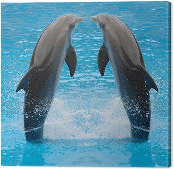 Obraz na Płótnie Delfin bliźniaki