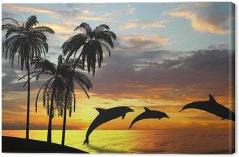 Obraz na Płótnie Delfiny w pobliżu Hawajów