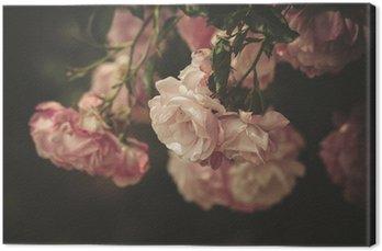 Obraz na Płótnie Delikatne róże