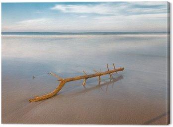 Obraz na Płótnie Długa ekspozycja na plaży