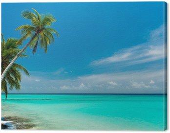 Obraz na Płótnie Dream Beach