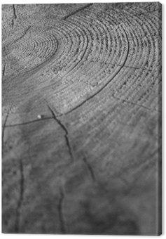 Obraz na Płótnie Drewno