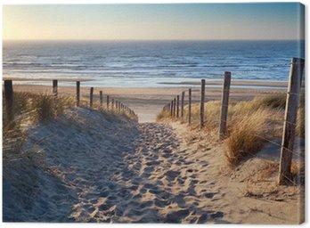 Obraz na Płótnie Droga do północnej plaży morskiej w złoto słońca