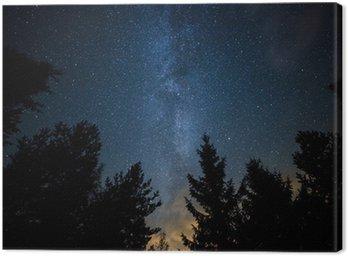 Obraz na Płótnie Droga Mleczna nad lasem