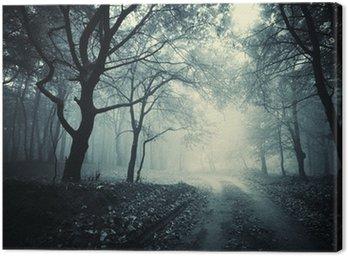 Obraz na Płótnie Droga przez ciemny las
