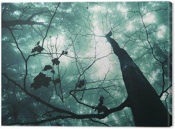 Obraz na Płótnie Drzewo w magiczny las z zielonej mgle