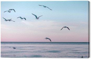 Obraz na Płótnie Duża grupa stado mew na morzu wody jeziora i latające w niebo na zachodzie słońca latem, stonowanych filtry Instagram retro hipster, efekt filmu