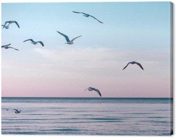 Duża grupa stado mew na morzu wody jeziora i latające w niebo na zachodzie słońca latem, stonowanych filtry Instagram retro hipster, efekt filmu