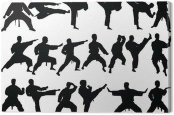 Obraz na Płótnie Duża kolekcja karate - wektor