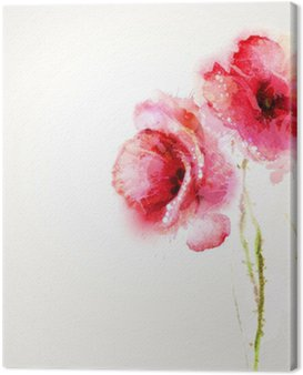 Obraz na Płótnie Dwa czerwone maki kwitnące. kartka z życzeniami.