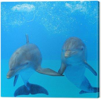 Obraz na Płótnie Dwa delfiny w wodzie