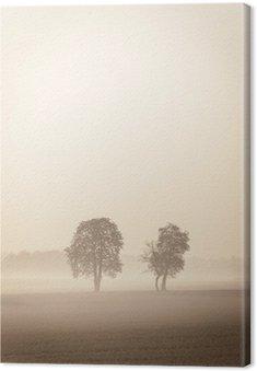 Obraz na Płótnie Dwa Lonely drzewa w mgle