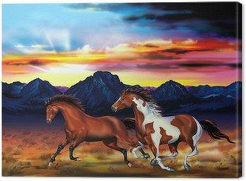 Obraz na Płótnie Dzikie konie uruchomić ilustracji