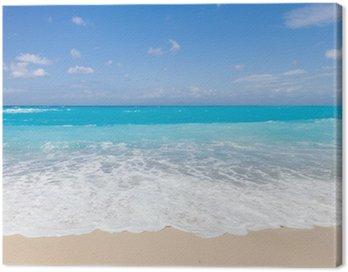 Obraz na Płótnie Dzikiej plaży na wyspie Lefkas