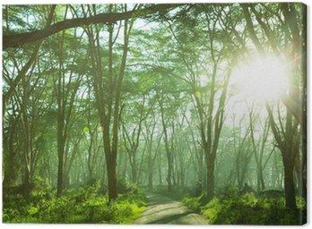 Obraz na Płótnie Dżungla