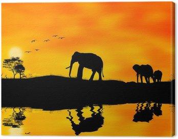 Obraz na Płótnie Elefanti afryka