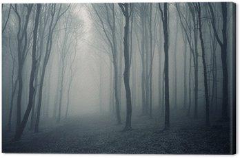 Obraz na Płótnie Elegancki las z mgły