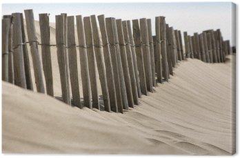 Obraz na Płótnie Erozja wybrzeża: Ochrona wydma ganivelles