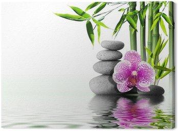 Obraz na Płótnie Fioletowy kwiat orchidei bambusa na koniec wodą