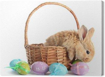 Foxy królik puszysty koszyka z jaja wielkanocne na białym