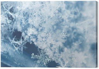 Obraz na Płótnie Frosty płatki śniegu