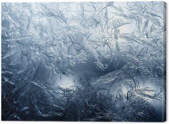 Obraz na Płótnie Frosty wzór w porządku natury