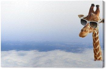 Obraz na Płótnie Funny żyrafa z okulary wychodzi z chmury