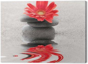 Obraz na Płótnie Galets et reflet Gerbera zen