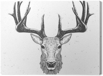 Obraz na Płótnie Głowa jelenia na białym